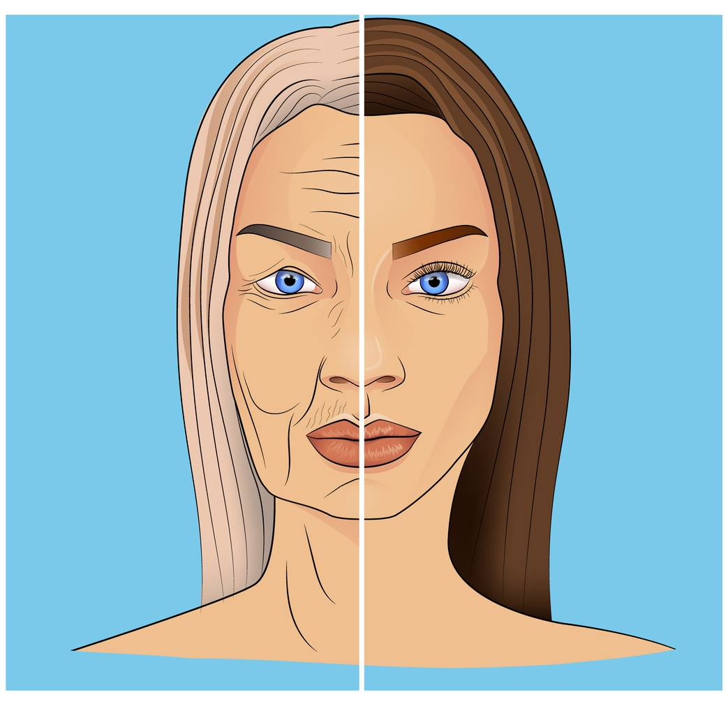 Illustration showing how facial aging works.